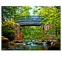 Hidden beauties and flowing streams Photographic Print