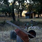 Faraway Ranch, Chiricahua, AZ by Christopher  Rees