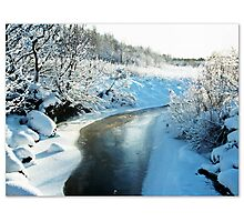 Winter bliss frozen in time Photographic Print