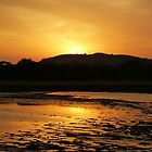 Sunset at Minneriya National Park Sri Lanka by Inez Wijker