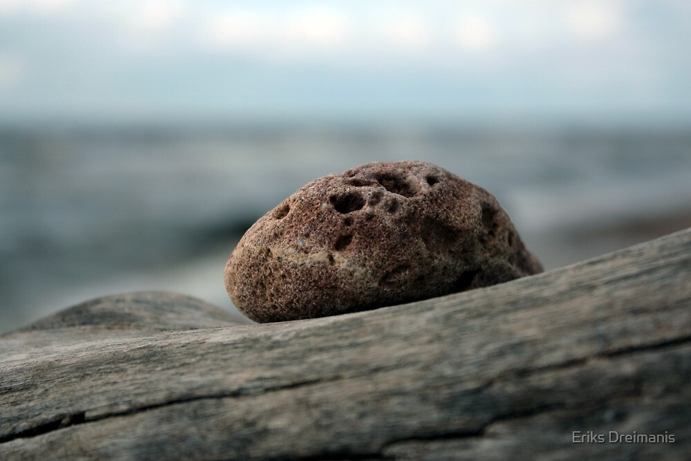 Small stone on a branch by Eriks Dreimanis