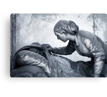 Covering  Canvas Print