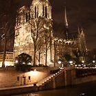 Notre Dame by Natalie Richardson
