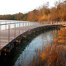 The Boardwalk #2 by Eileen McVey