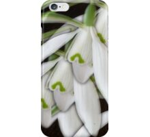 A Plethora of Snowdrops iPhone Case/Skin