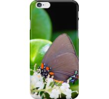 Nectar Gathering iPhone Case/Skin