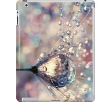 Rainbow Rain iPad Case/Skin