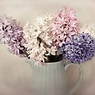 Hyacinths by Ellen van Deelen