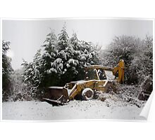 Warmth in a Winter Landscape Poster
