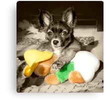 A dog and her toy Canvas Print