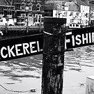 Mackerel Fishing by Sarah Broome