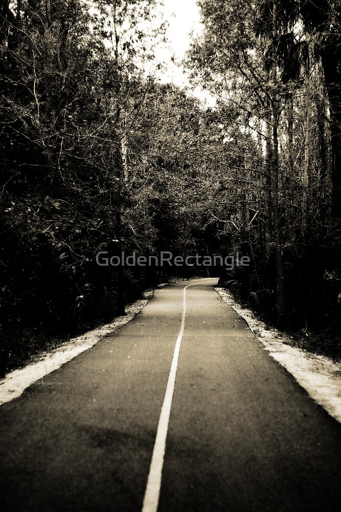 *Where will this road take me...? by GoldenRectangle