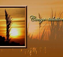 Congratulations Sunset by jkartlife