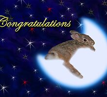 Congratulations Bunny Rabbit by jkartlife