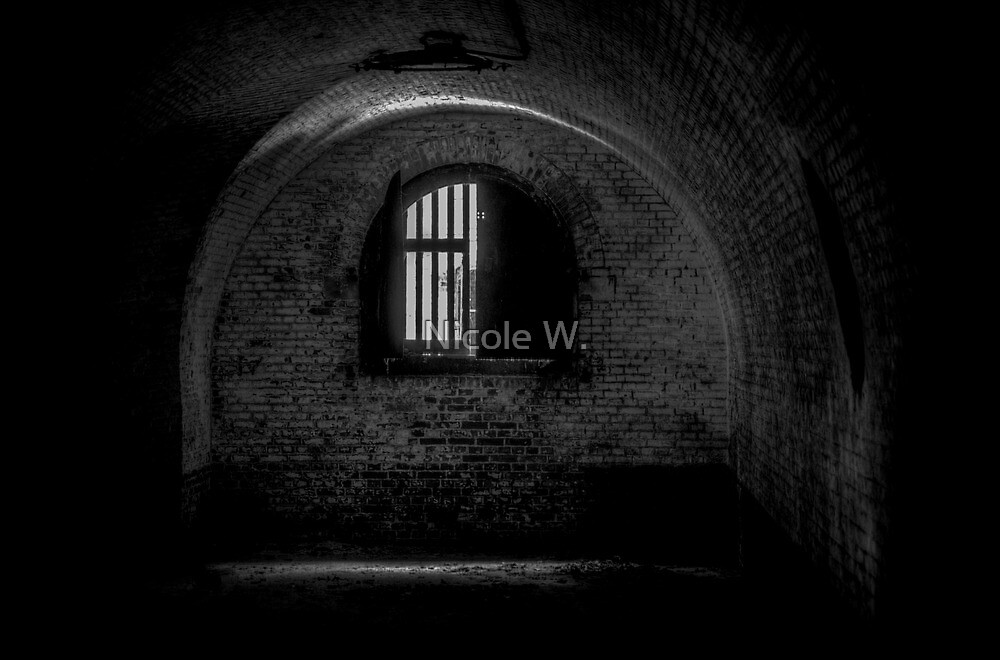 Window in an old abandoned fort by Nicole W.