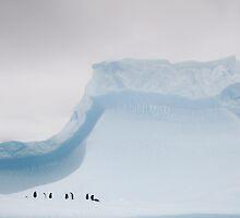 Penguins on an iceberg by Jeni Stembridge