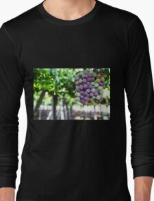 Ripe grapes on a vine in a vineyard  Long Sleeve T-Shirt
