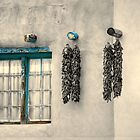 Chilies on Wall by Stellina Giannitsi