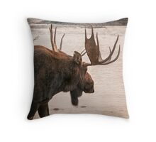 Bull Moose at the Snake River Throw Pillow