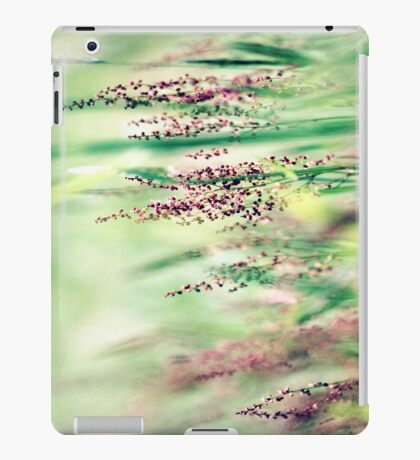 I Had a Dream iPad Case/Skin
