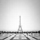 Eiffel Tower by Andrew & Mariya  Rovenko