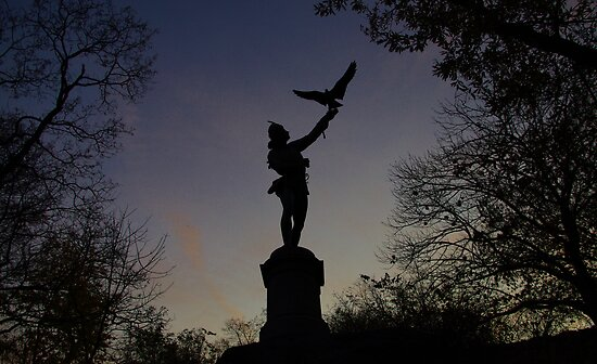 The Falconer Silhouette by Mistral Hill  Photography