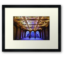 Milton Tiles at Bethesda Terrace Framed Print
