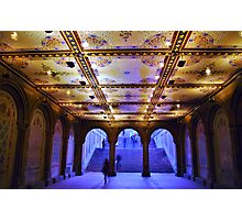 Milton Tiles at Bethesda Terrace Photographic Print