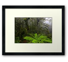 Gondwanaland Framed Print