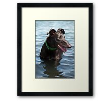 Portrait of Buddy Framed Print