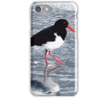Pied oystercatcher iPhone Case/Skin