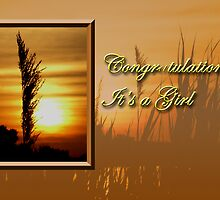 Congratulations It's A Girl Sunset by jkartlife