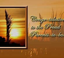 Congratulations To The Proud Parents To Be Sunset by jkartlife
