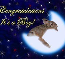 Congratulations It's A Boy Bunny Rabbit by jkartlife
