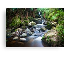 Sherbrooke Forest Waterfall Dandenong Ranges Canvas Print