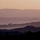 Bella Toscana by phil decocco