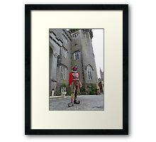 Court Fool Framed Print