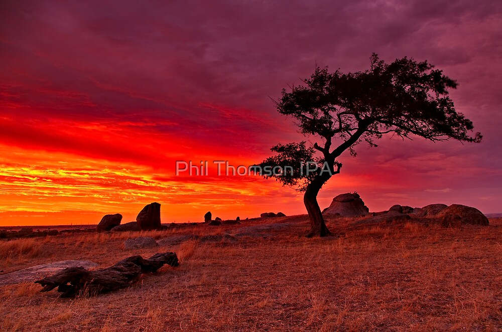 """Sundown Sensation At The Rocks"" by Phil Thomson IPA"