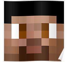 Vikkstar123 Minecraft skin Poster