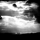 Summer Storm ... by Erin Davis