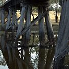 Old Rail Bridge Cavendish Victoria  by forgantly