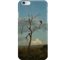 Am I the only one around here? iPhone Case/Skin