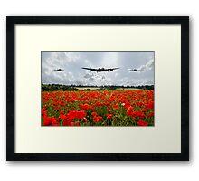 Poppy Flypast Framed Print
