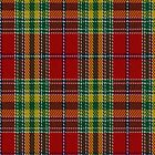 00203 Dunblane District Tartan Fabric Print Iphone Case by Detnecs2013