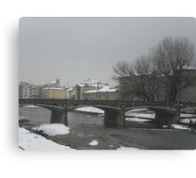 the Long Parma - italy - Europe -VETRINA RB EXPLORE APRILE 2013  Canvas Print