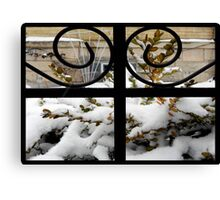 Picture Perfect © Canvas Print