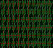 00213 Glen Lyon District Tartan Fabric Print Iphone Cases by Detnecs2013