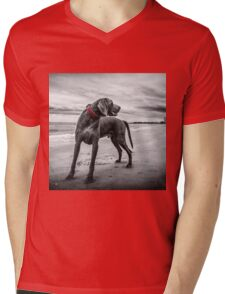 Weimaraner Mens V-Neck T-Shirt