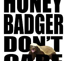 Honey Badger Don't Care At All by nadil
