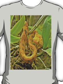Eyelash viper  T-Shirt